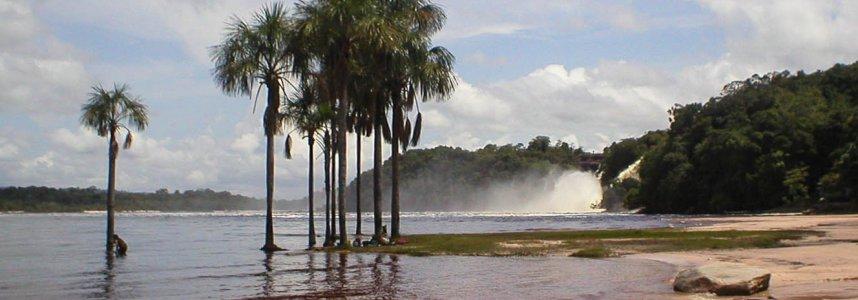 """Araguato Expeditions"" Tours | Canaima & Salto Angel - Venezuela"