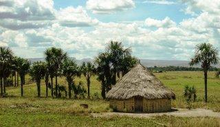 """Araguato Expeditions"" Mantopai & Gran Sabana - Venezuela"
