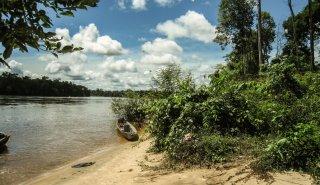 """Araguato Expeditions"" Rio Caura & Salto Pará - Venezuela"